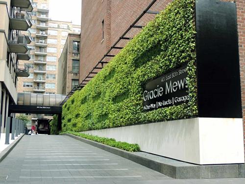 广东不错的植物墙设计与安装公司-专业的植物墙