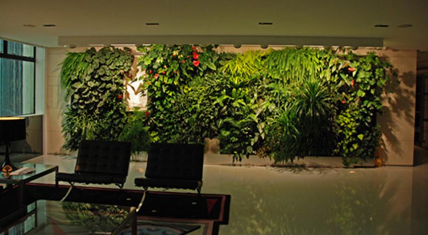靠谱的植物墙设计与安装推荐,专业的植物墙
