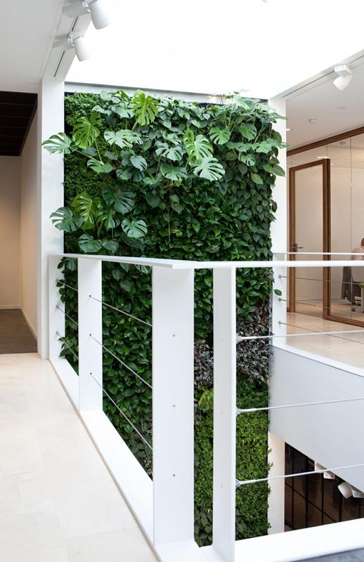 廣東可信賴的植物墻設計與安裝推薦|植物墻哪家好