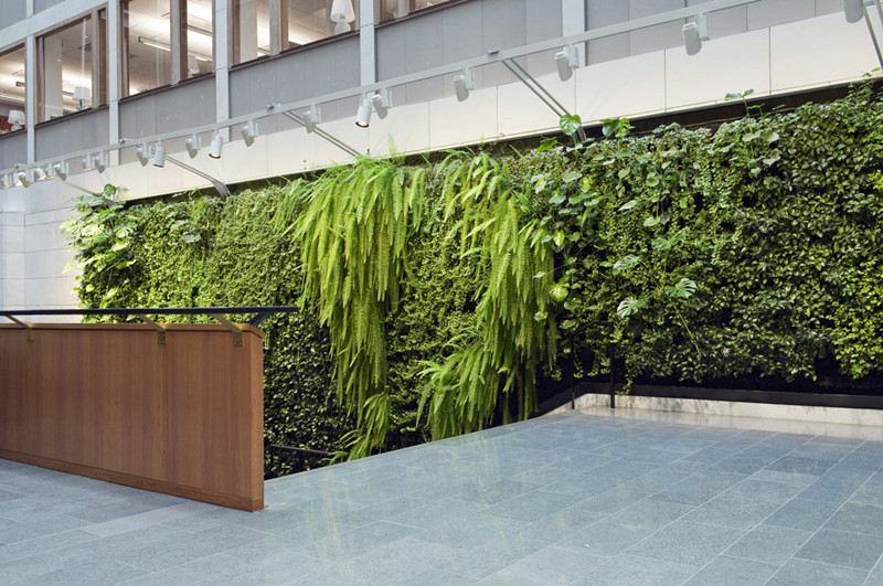 想找经验丰富的植物墙设计与安装就找森雅绿化有限公司|植物墙好不好