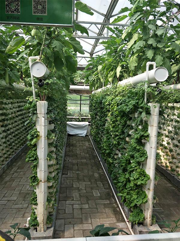 空气能温室大棚