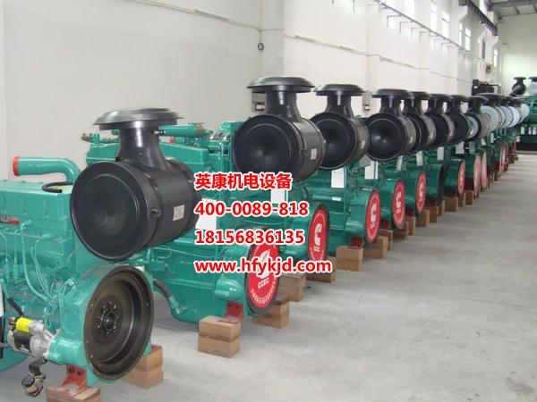 滁州康明斯柴油发电机租赁_哪里可以买到高性价康明斯柴油发电机组
