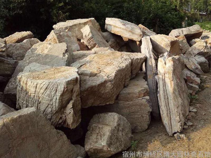 安徽龟纹石批发-专业的龟纹石提供商—博大园林
