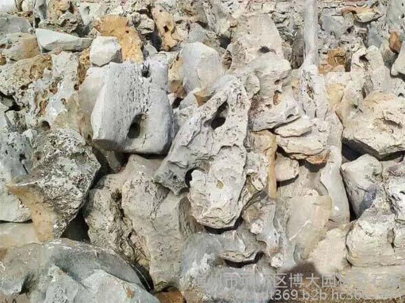 上海太湖石-价格实惠的太湖石在哪里买