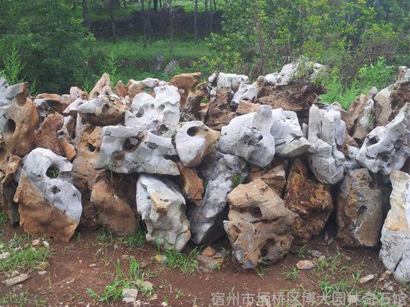 中国太湖石-口碑好的太湖石博大园林优惠供应