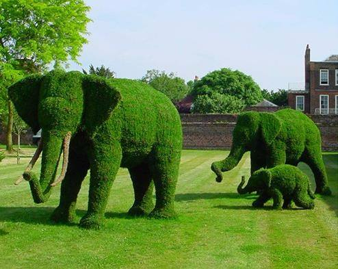 绿雕动物绿雕定制城市绿雕