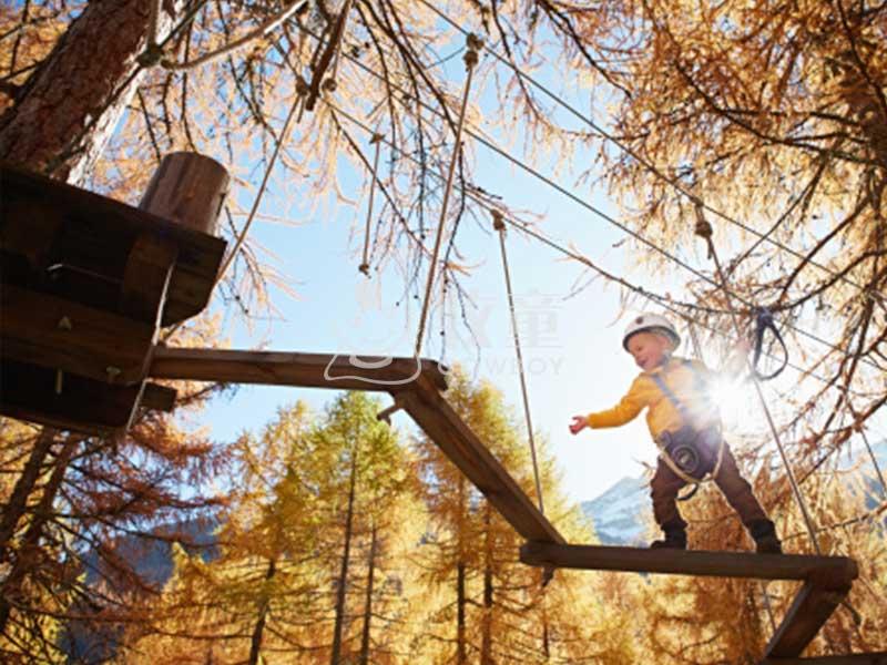 从林探险设施 儿童户外素质拓展器材丛林高空攀爬设备