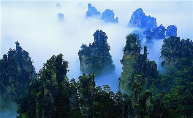 专业的张家界结伴游就在诚晨管家旅游服务有限公司,上海至张家界旅游