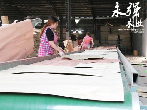 辽宁装饰板哪家好-在哪能买到高质量的多层板呢