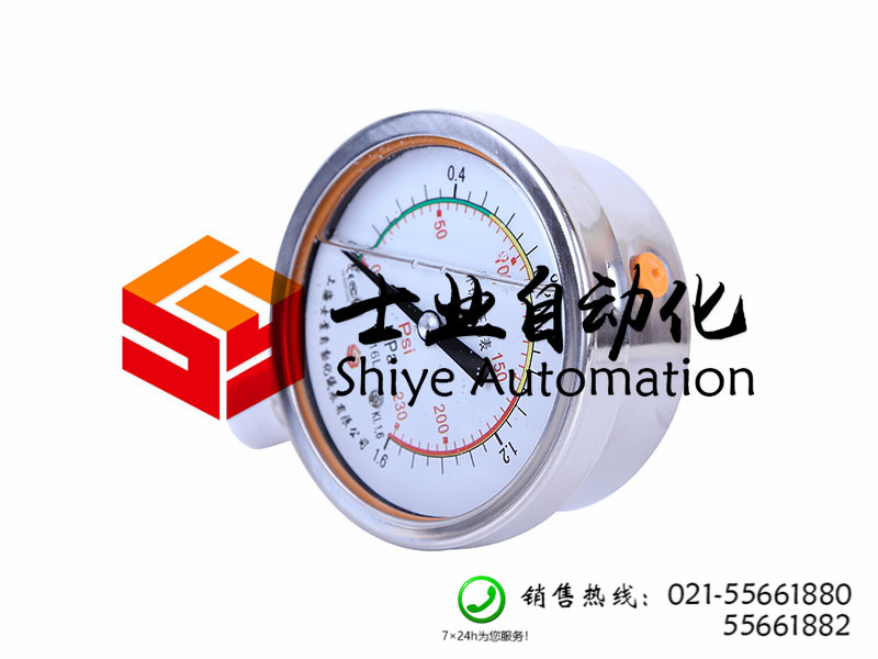 上海市价位合理的Y-100BFZ耐震压力表供销_山东价格