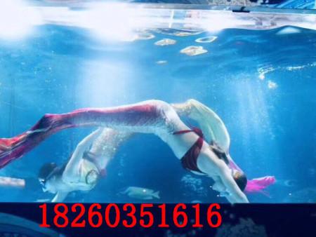 徐州哪里有提供信誉好的美人鱼表演|哪里有美人鱼表演出租