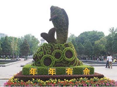 安徽动漫绿雕-祥雨园艺专业供应动漫绿雕