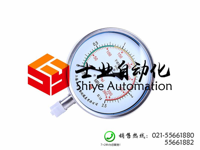 供应上海高性价Y-B系列不锈钢压力表,价格供应商