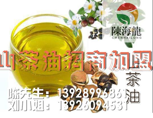 压榨油茶籽油 划算的陈海龙野山茶油就在湖南陈海龙生态农业