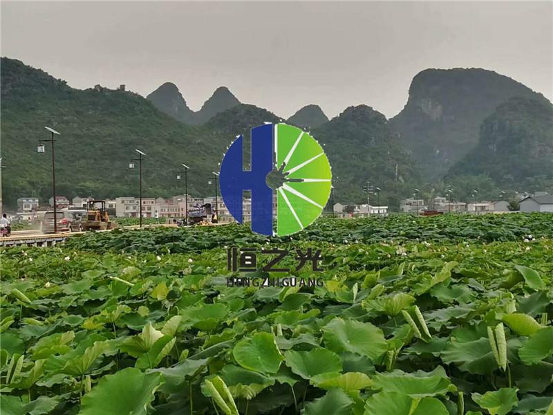 广西农村太阳能路灯-广西实惠的农村太阳能路灯