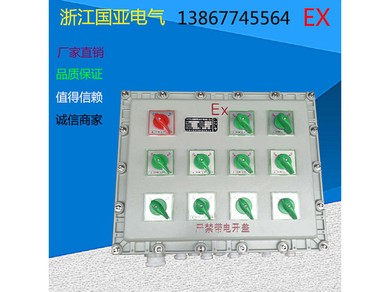 北京?#36771;?#37197;电箱-购买品牌好的?#36771;?#37197;电箱优选国亚电气