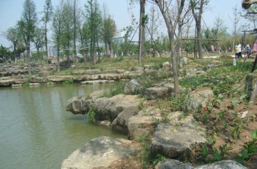 有品质的驳岸石天成园林供应 景观石市场