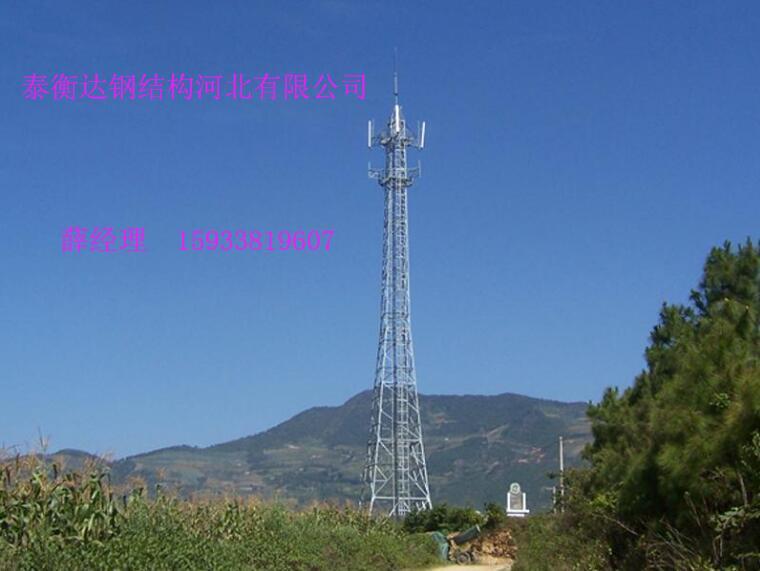 有实力的信号塔厂家就是泰衡达钢结构-湖南信号塔