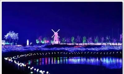 专业的灯光节出租哪里有-贵州灯光节出租销售