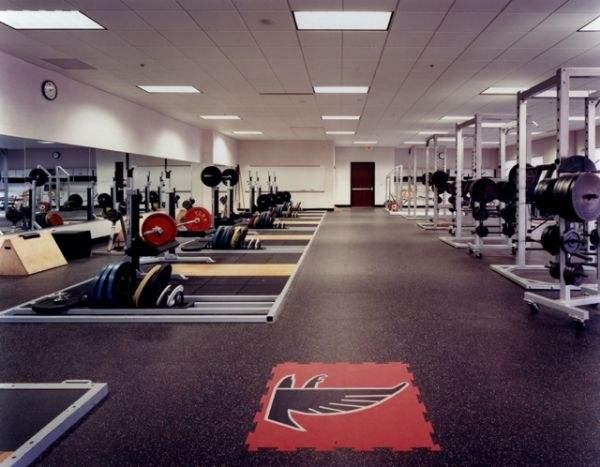 廊坊哪里有供应优质的健身房橡胶地垫_批发地垫