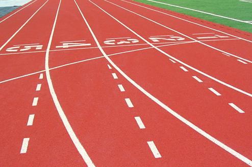 沈阳森跃体育高性价比的人造草坪|塑胶跑道生产