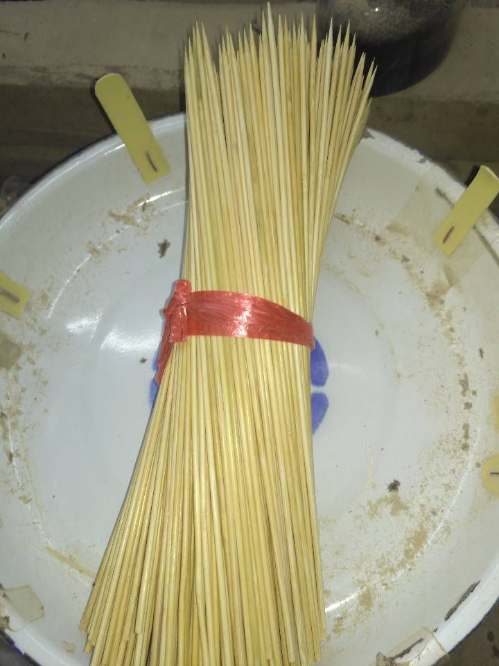 梧州高性價燒烤竹簽-供應|燒烤碳