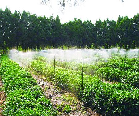 固原节水灌溉价格――宁夏划算的宁夏园林节