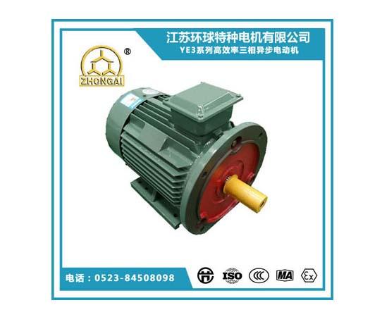 买YE3系列三相异步高效电机认准环球特种电机_耐用的YE3系列三相异