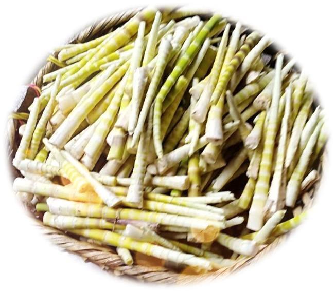 哪儿有批发超值的草角山方竹笋,厂家供应方竹笋
