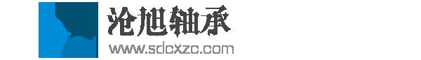 臨清市滄旭軸承有限公司