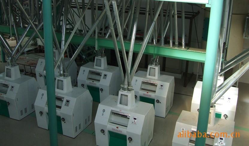 甘肃小麦加工成套设备哪家好-专业的玉米加工成套设备供应商_奥盛粮机
