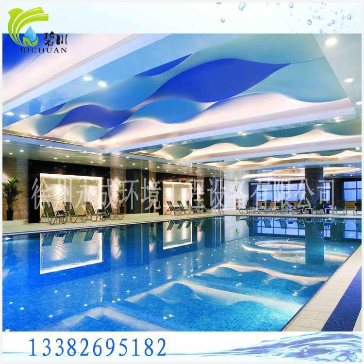 徐州市泳池水循环净化设备
