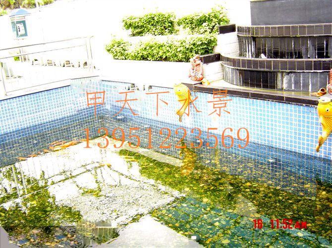 成都市【别墅锦鲤鱼池】水循环净化系统设计。