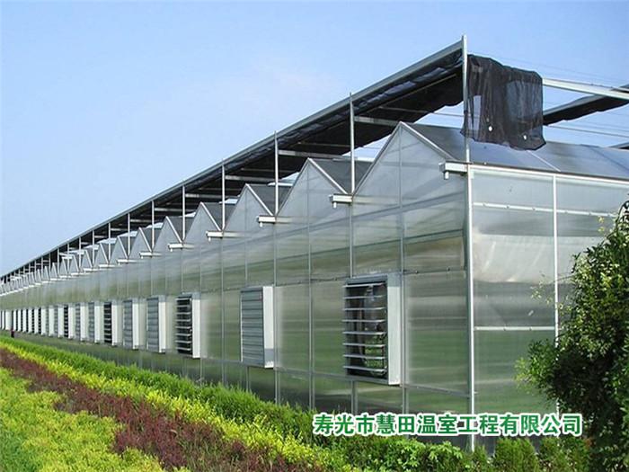 纹络玻璃温室建设_优质的玻璃温室推荐