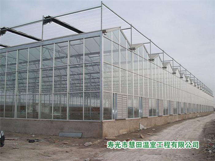 山东结实耐用的玻璃温室――承建有立柱温室大棚