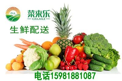 新郑蔬菜送货上门——销量好的蔬菜批发商