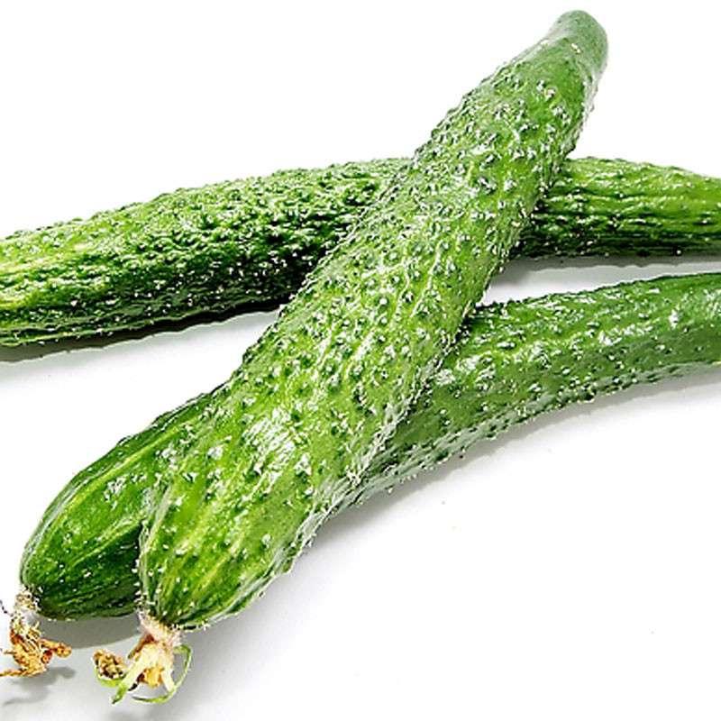 郑州菜来乐-声誉好的蔬菜厂家,郑州新鲜蔬菜批发