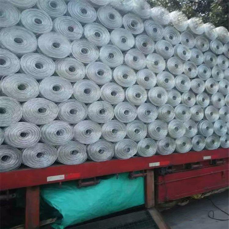 圈玉米网批发-红日金属丝网为您供应优质圈玉米网钢材