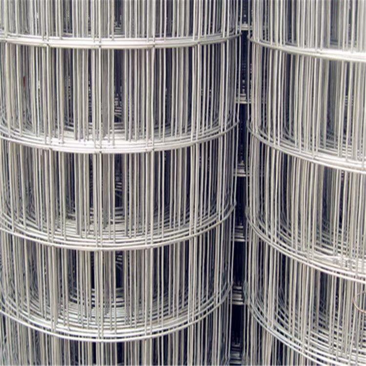圈玉米网供货厂家_河北信誉好的圈玉米网供应商当属红日金属丝网