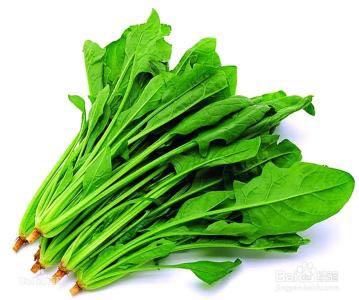 广东蔬菜配送价格,东莞专业蔬菜配送公司