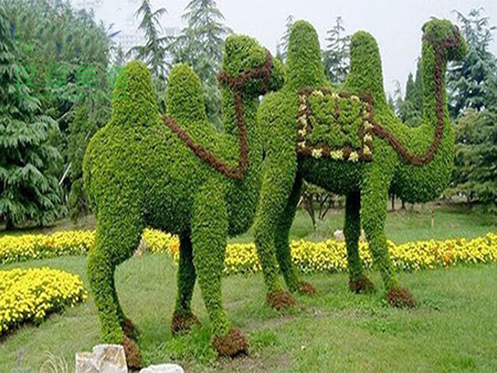 植物绿雕园林-可靠的植物绿雕合作同轩工艺品提供