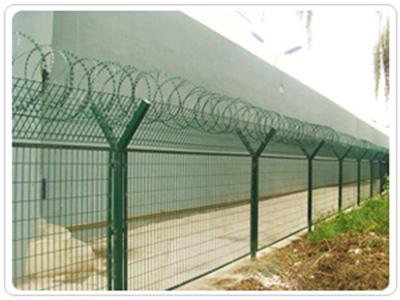 监狱刺网护栏价位-品牌好的监狱刺网护栏在哪能买到