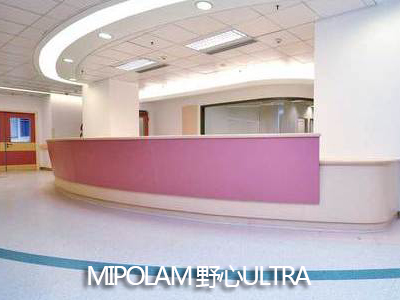 广西耐磨PVC地板-洁福美宝琳野心系列地板供应