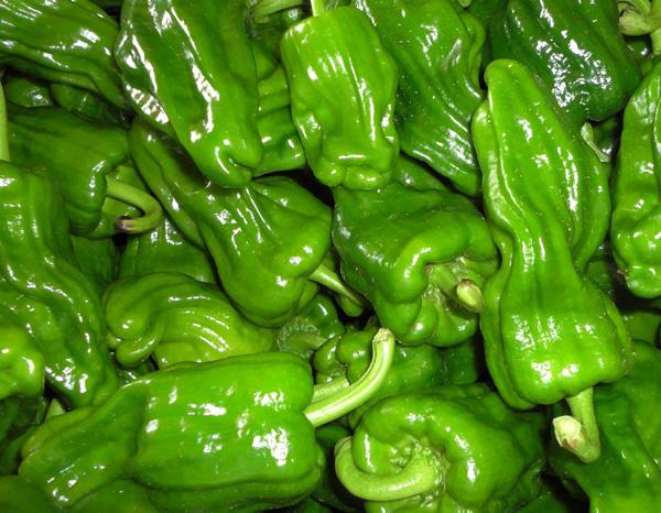 扬州市绿林蔬菜合作社高品质葱蒜类蔬菜供应_叶菜类蔬菜加盟
