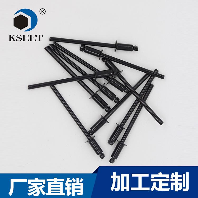 深圳厂家定制生产不锈钢沉头拉钉