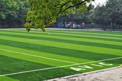 武汉哪里有供应好用的人造草坪-武汉人造草坪