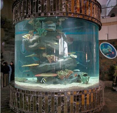 供应圆形亚克力鱼缸,异形亚克力鱼缸、大型水族