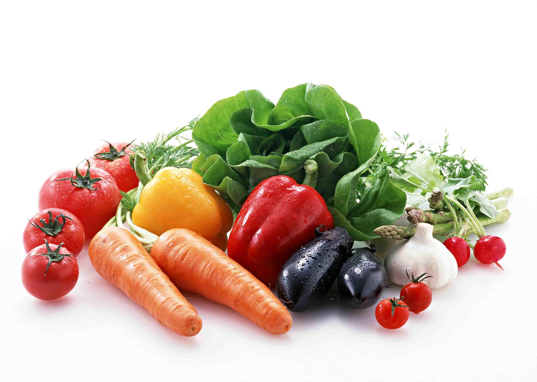 福州蔬菜配送