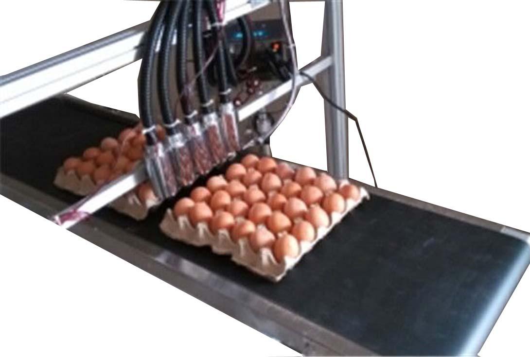 河北鸡蛋喷码机厂家