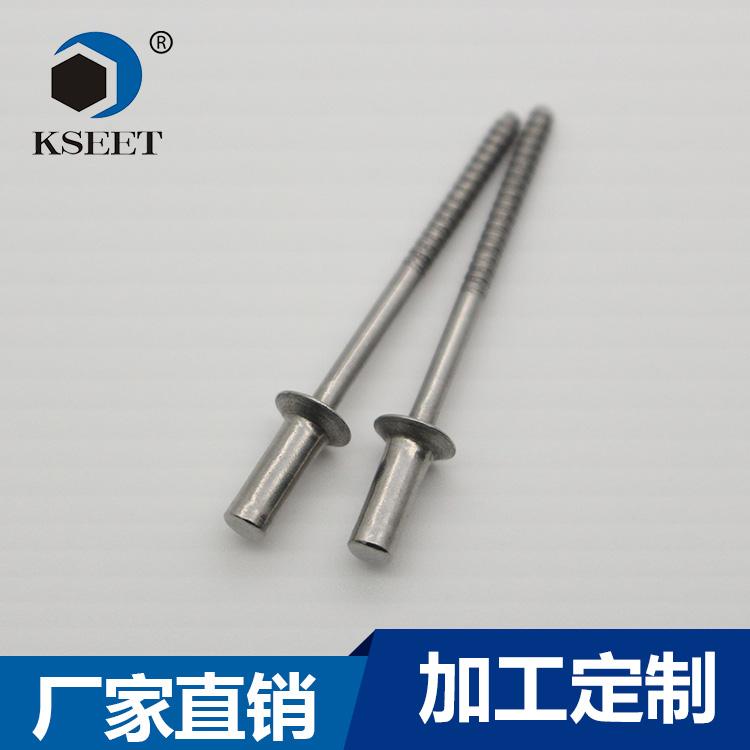 深圳(凯仕特五金)天线紧固件用封闭扁圆头拉钉